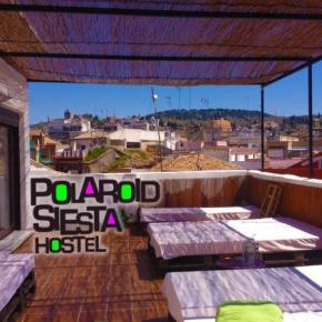 Hostels und Jugendherbergen - Polaroid Siesta Hostel