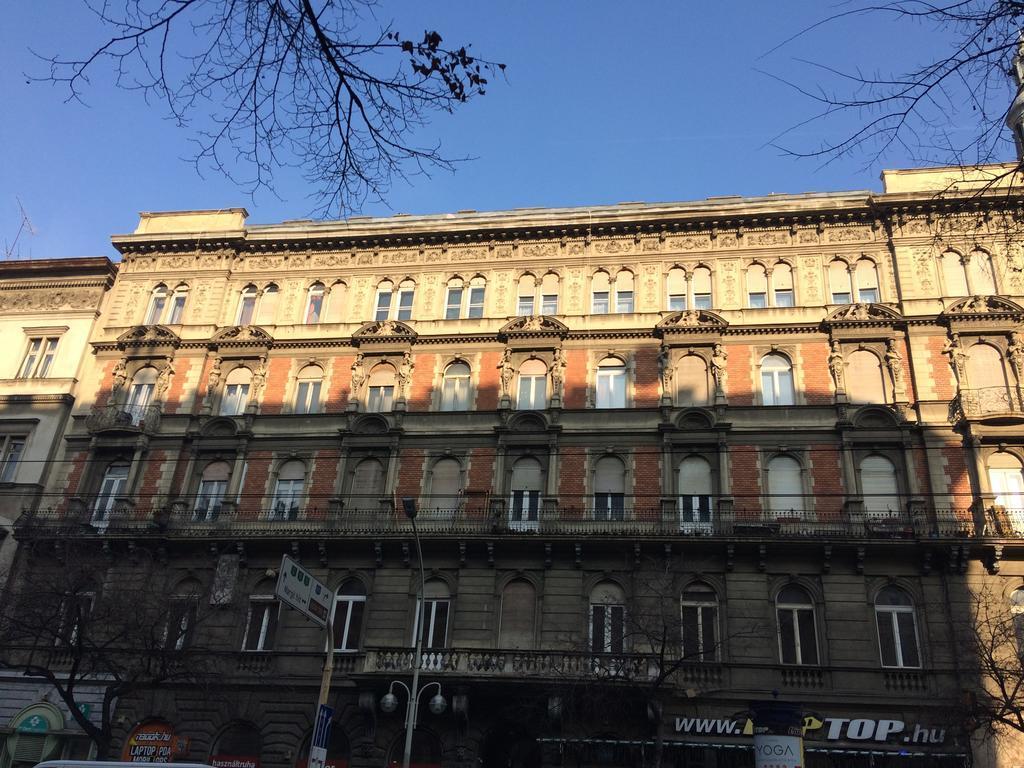 Black Dog Hostel Budapest