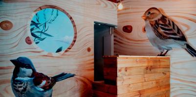 Hostels und Jugendherbergen - Bird House Hostel